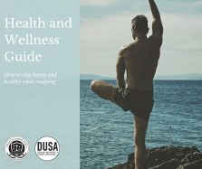 Health and Wellness Guide Proposal
